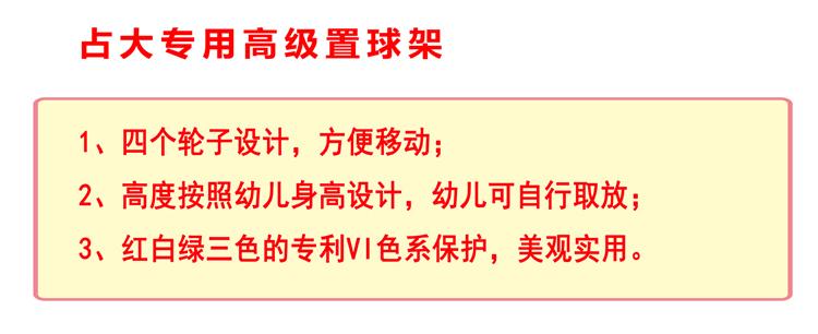 广东占大 占大文化 占大幼儿篮球 广东占大文化有限公司